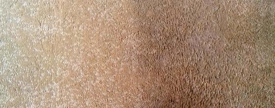 Čištění koberce | Vlkov